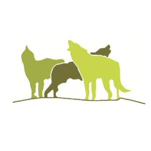 """Trail del Principato di Lunassi """"Corri coi lupi"""" La Classifica"""